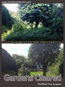 Garden Clearance - Sheffield
